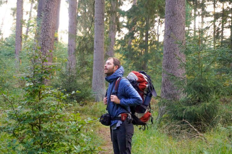 Allein Wandern: Wanderer steht im Wald und schaut sich um