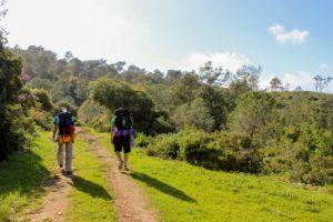 Erste Trekking Tour planen - 2 Wanderer laufen auf Wanderweg