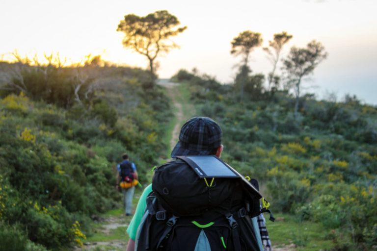 Wanderpartner finden - Wanderer auf Pfad